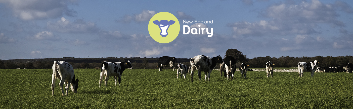 New England Dairy Staff Catalog