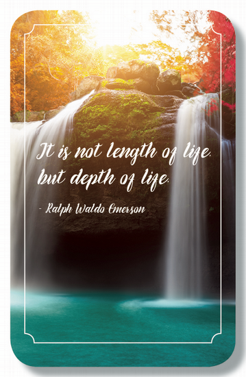 Depth Of Life