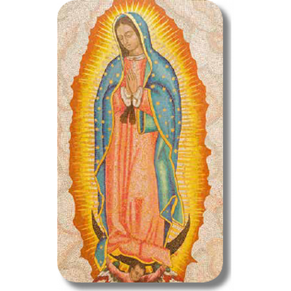 Guadalupe2.5